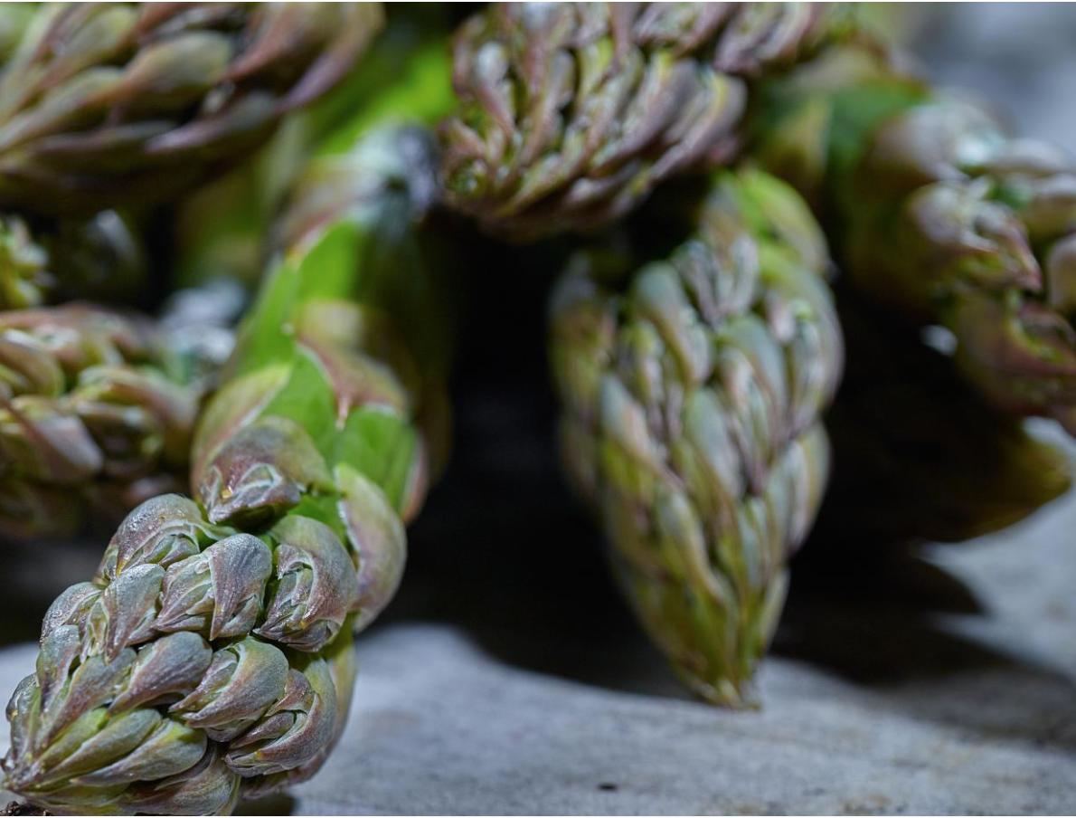 Flan d'asperges vertes aux morilles sans cuisson !